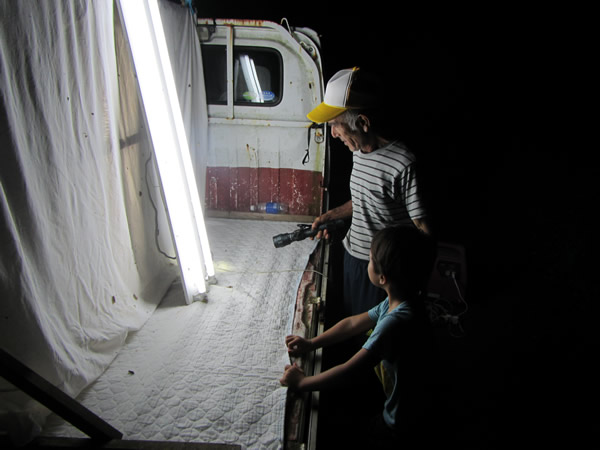 奄美大島&加計呂麻島のおすすめ宿【子連れのんびり家族旅行】さんごビーチ