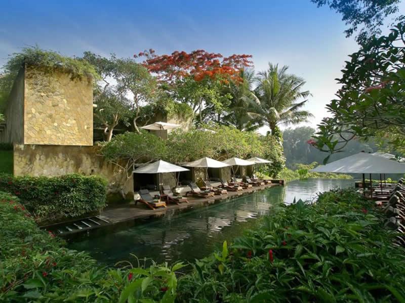 緑にすっぽり囲まれる マヤ ウブド リゾート & スパ
