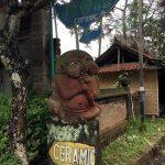 バリ島の小さな村から始まったタンテリケラミック
